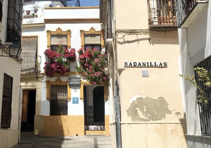 Một trong những di sản văn hóa của Cordoba là lễ hội Patios. Patios là từ tiếng Tây Ban Nha để chỉ các sân hiên nhà. Tại Cordoba, hầu hết các gia đình đều trồng hoa tươi trang trí trong các khoảng sân hiên, trên tường rào, cửa sổ tạo nên những nét trưng riêng của khu phố cổ Cordoba, ngập tràn màu sắc.