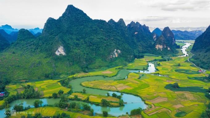 Dòng nước trong xanh uốn lượn qua những thửa ruộng bậc thang chín vàng tại thung lũng Phong Nặm, Trùng Khánh.