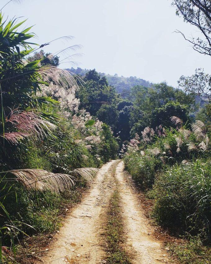Đường từ Hà Nội vào đến chân núi rất dễ đi nhưng đoạn lên núi khó khăn hơn do nhiều đá gập ghềnh và dốc, thích hợp cho ôtô hai cầu, nếu bạn đi xe máy cần dùng xe số khỏe và tay lái cứng, thời gian di chuyển từ chân núi lên đỉnh tốn khoảng 20 phút. Ảnh: vedugx/instagram